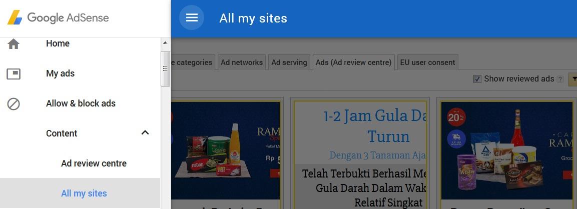 Kata Kunci Untuk Filter Iklan Tidak Pantas Di Adsense