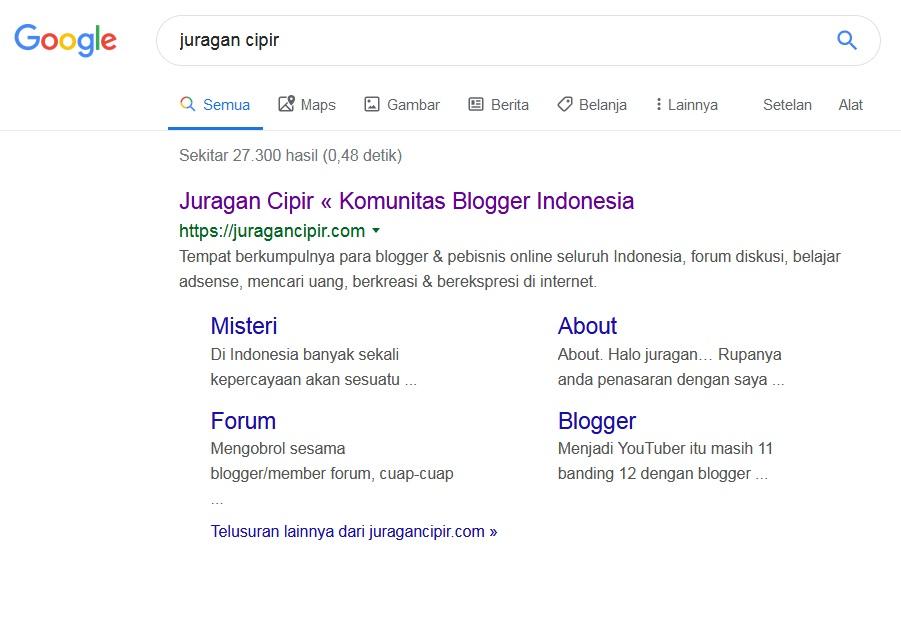 Google Sitelink Yang Bukan Sitelink Tetapi Article Link