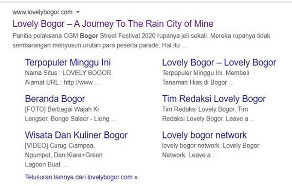 Apakah Google Sitelinks Lebih Mudah Didapat Website WordPress? - sitelinks lovely bogor